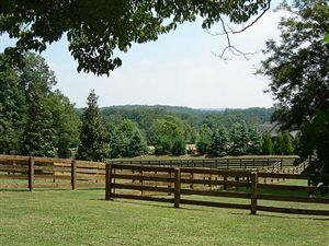#Tranquil Gated, Breezy Hill #EquestrianEstate